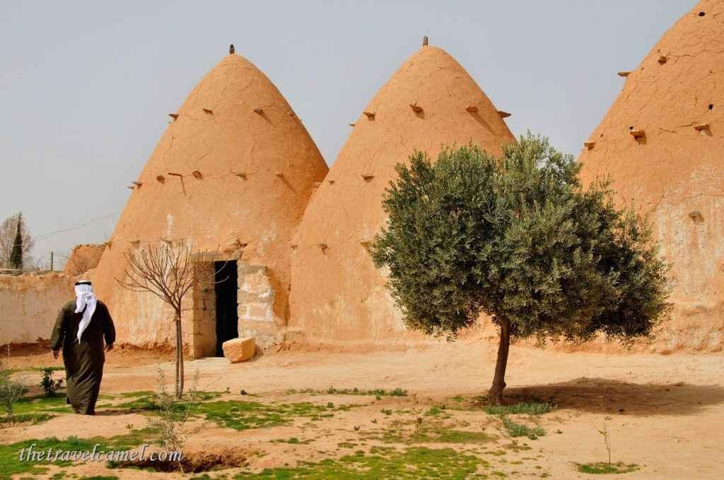 Village of Twalid Dabaghein - Syria