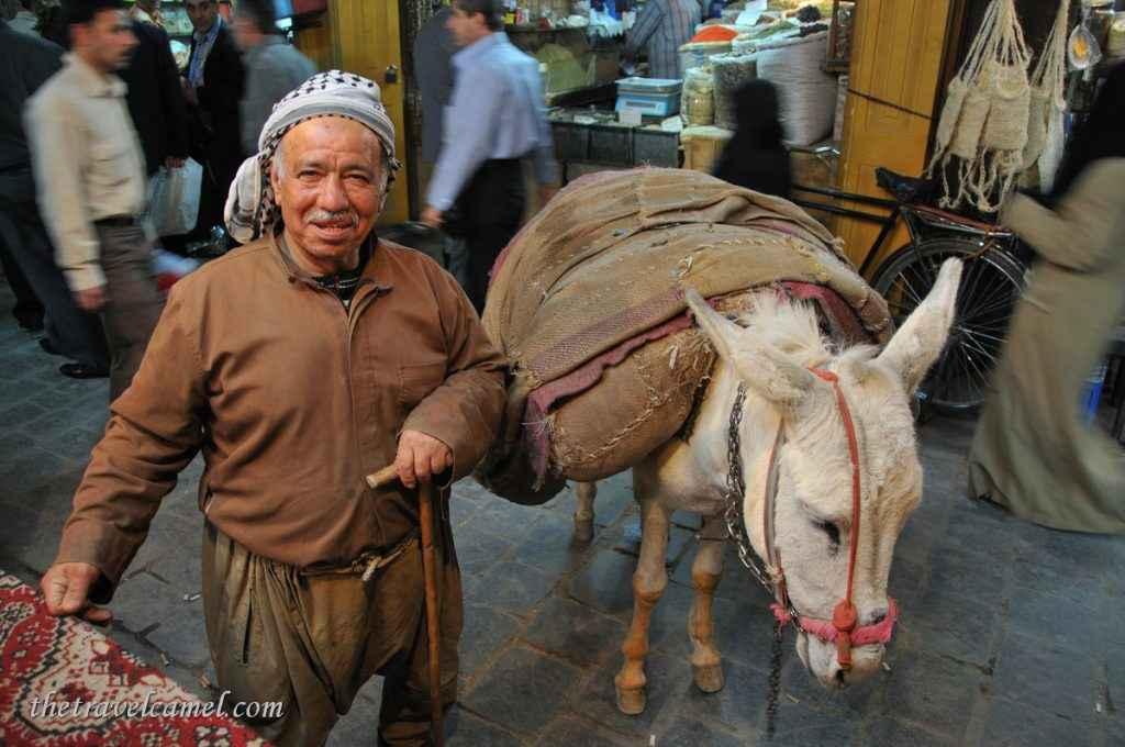 Man and his donkey - Aleppo, Syria