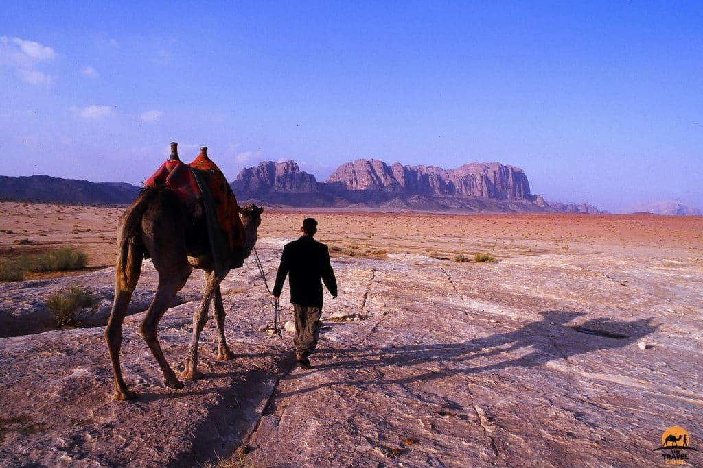 A Bedouin and his Camel on a Late Afternoon - Wadi Rum, Jordan