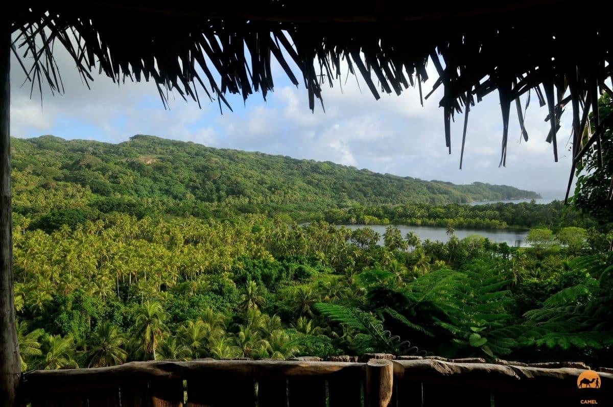 View Across a Canopy of Green - Tanna Island, Vanuatu