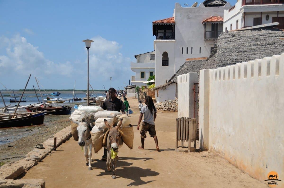 Waterfront of the Historical Lamu Town - Kenya
